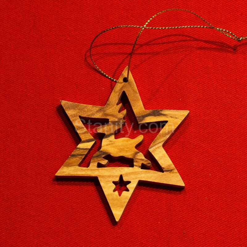 Christmas Ornament – 110